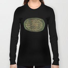 Planetarium / Stellar Map Long Sleeve T-shirt