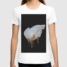 The Eternal T-shirt