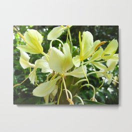 Hawaiian Flowers Metal Print