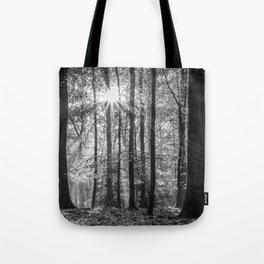 Beech Wood Sunrise Tote Bag