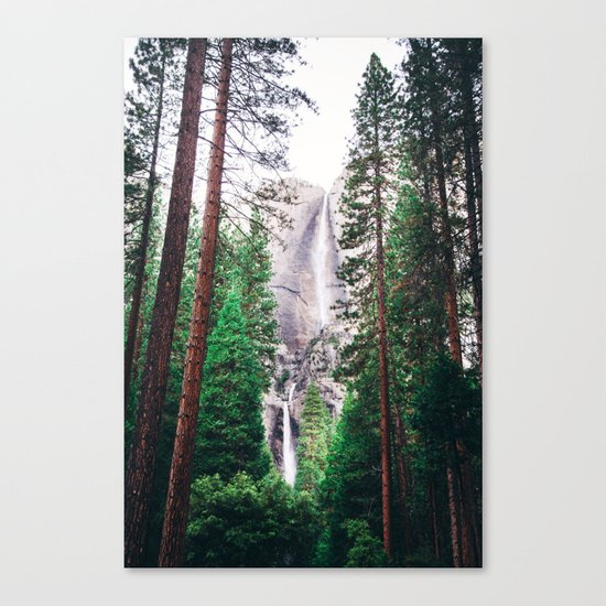 Waterfall amongst trees Canvas Print
