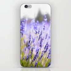 Lavenders iPhone & iPod Skin