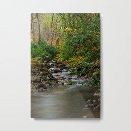 Woodland stream Metal Print