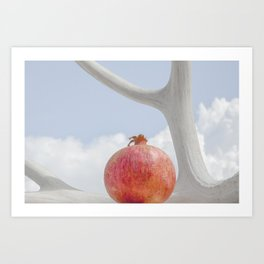 Still Life with Pomegranate 3 by Murray Bolesta! Art Print
