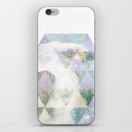 Eagle iPhone Skin