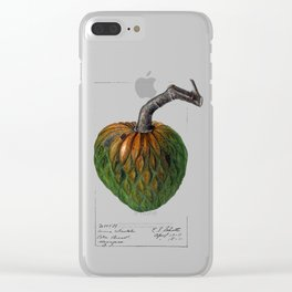 Custard Apple Clear iPhone Case