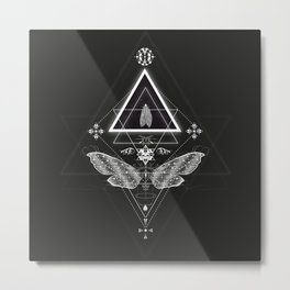 Mysterious moth Metal Print