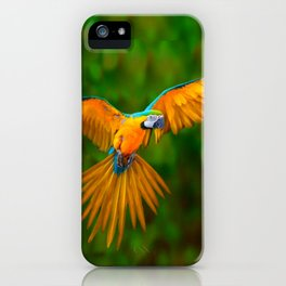 Flying Golden Blue Macaw Parrot Green  Art iPhone Case