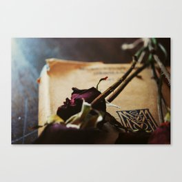 All Roses Have Thornes Canvas Print