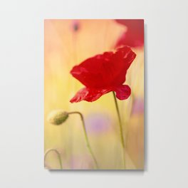 Poppy-style character Metal Print