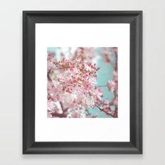 Pink Cherry Blossom Framed Art Print