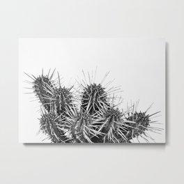 cactus Metal Print