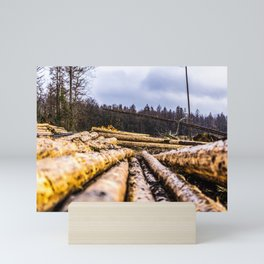 Poltery Site (Wood Storage Area) After Storm Victoria Möhne Forest 6 Mini Art Print
