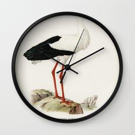 Cherry (Cerasus visciola) from Pomona Italiana (1817 - 1839) by Giorgio Gallesio (1772-1839) Wall Clock