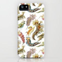 Ernst Haeckel - Nudibranchia (Snails) iPhone Case