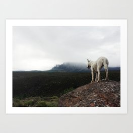 Bella On The Mountain Art Print