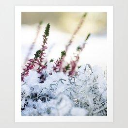 Wintertime in Scandinavia Art Print
