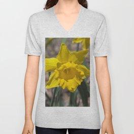 Daffodil 2 Unisex V-Neck