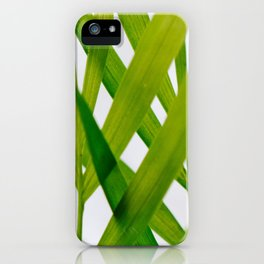 Florida Palm iPhone Case