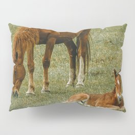 Horse And Foal Pillow Sham
