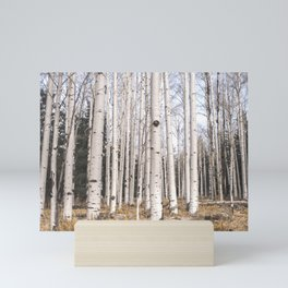 Trees of Reason - Birch Forest Mini Art Print