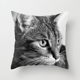 cat look Throw Pillow