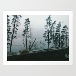 Lakes and Trees Art Print