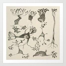Neuron Cells Art Print