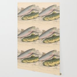 Vintage River Trout Illustration (1866) Wallpaper