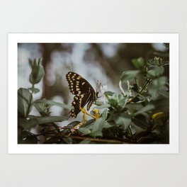 in the quiet moments Art Print