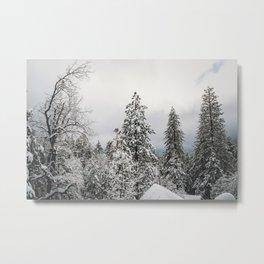 Snowy Tree Tops Metal Print
