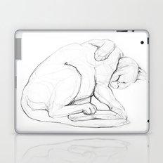Cat II   /  Chat II   /  Gato II Laptop & iPad Skin