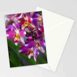 Mom's Magenta Grass Orchids Stationery Cards
