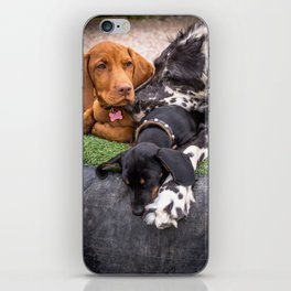 Pup Pile-up iPhone Skin