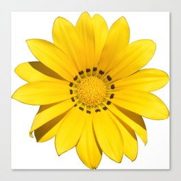 Yellow flower / dots Canvas Print