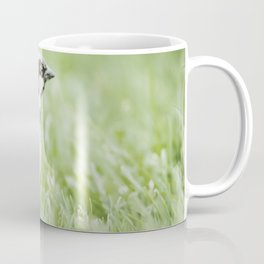 Food? Where? Coffee Mug