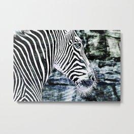 Wildlife Kingdom Collection Metal Print