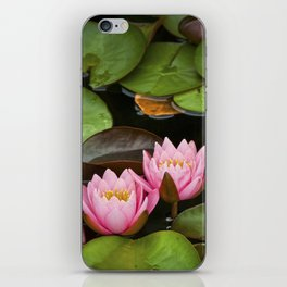 Pink Lily Pads with Blossoms on a Michigan Pond iPhone Skin