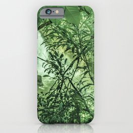 Jungle View at Iguazu National Park  iPhone Case