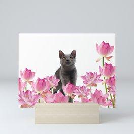 Grey Cat sitting in Lotos Flower field Mini Art Print