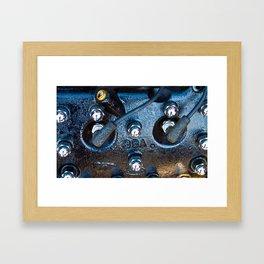 Flathead Framed Art Print