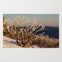 Winter Sunset on the Mountainside Rug
