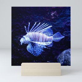 Sea World Lion Fish Mini Art Print