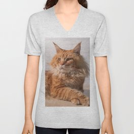 Purebred red Maine Coon cat lying on the floor at home Unisex V-Neck