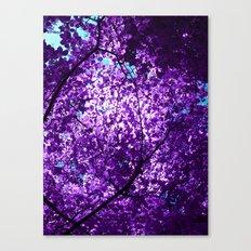 purple tree XXXIV Canvas Print