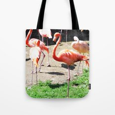 THE DANCE OF THE FLAMINGOS Tote Bag