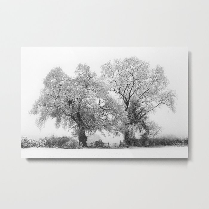 Snowbound Metal Print