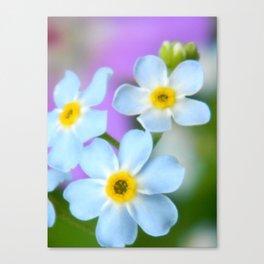 Floral Beauty #6 Canvas Print