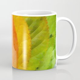 Collection beautiful colorful autumn leaves Coffee Mug