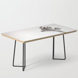 Joshua Tree in Black & White Coffee Table
